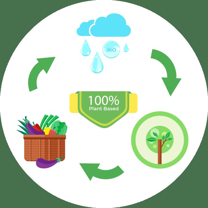 plant based iconography sustainability arkatechture-lg